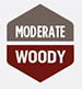 Moderate Woody Beer