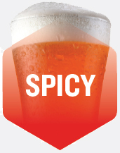 Spicy Flavour Beer
