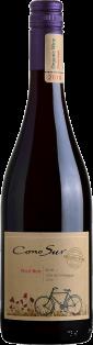 Cono Sur Organic Pinot Noir 750 ml